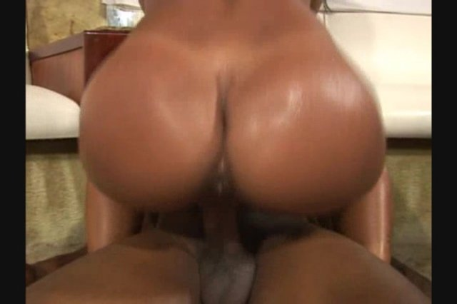 phat azz brazilian orgy 6 torrent